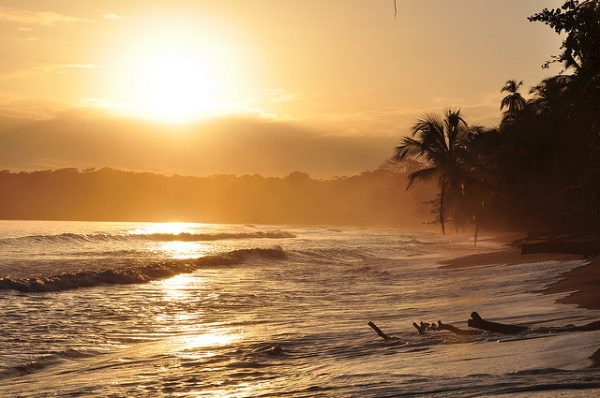 Immerse yourself in a new language from the comfort of a beach in Costa Rica