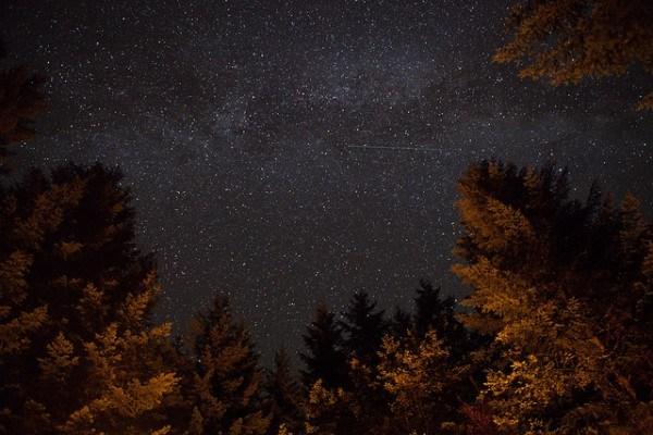 Stargazing in New Mexico